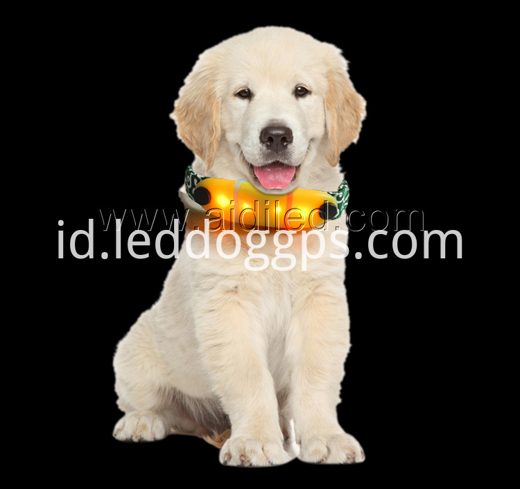 Led Dog Collar Micro Usb