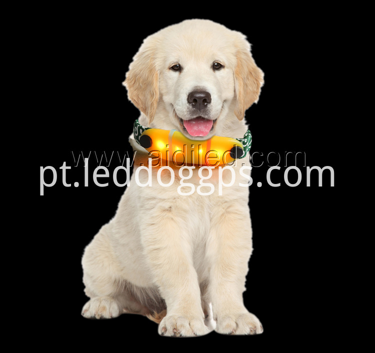 Brightness Led Dog Collar