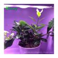 2 year warranty famly planting led grow light waterproof ip67 plant lamp
