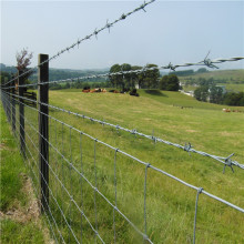 concertina barbed wire mesh fencing per roll