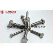 Boulon hexagonal DIN960 DIN931 (SS316 / 304)