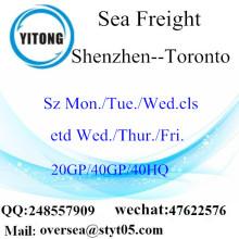 Shenzhen cảng biển vận chuyển hàng hóa vận chuyển đến Toronto