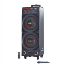 "Double 10"" Bluetooth Battery Speaker 6100t"