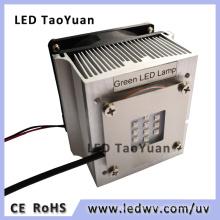 Green LED 25W High Power LED Lamp Module
