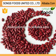 New crop ethiopian red kidney beans