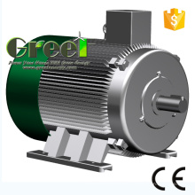Permanentmagnetgenerator mit 600 U / min für Wind- und Wasserturbinen