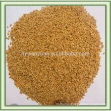 Freeze-dried garlic granule