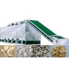Vegetable and Fruit Mesh Belt Dryer