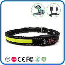Led Flashing In Dark Glow Dog Collar