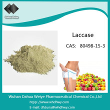 CAS: 80498-15-3 Factoty Supply and Food Grade Enzyme Laccase