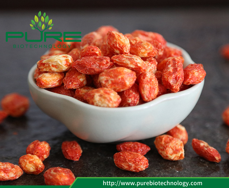 Freeze Dried red Wolfberry