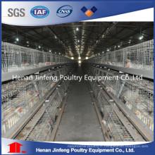 Équipement de ferme de volaille d'oeufs de poulet de galvanisation chaude / froide