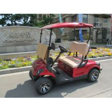 two people small gas power golf cart