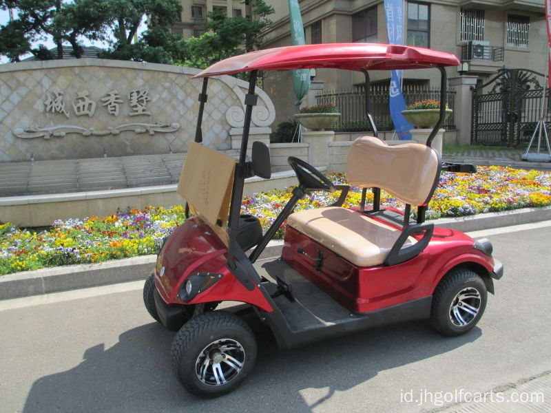 2 seater mini golf cart