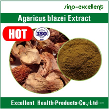 Agaricus Blazei Extract 30% for Anti-Tumor and Cancer