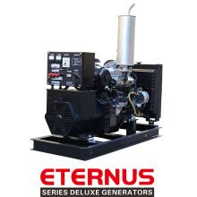 Высокое качество низкая оборотах дизельный генератор (BIS20D)