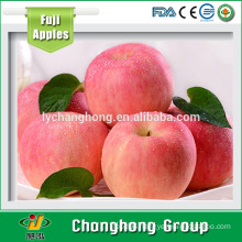 [HOT] Fuji Apple/fresh Apple for sale