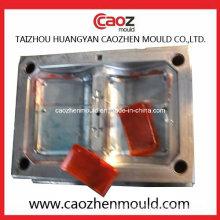 Hot Selling Plastic Back Car Light Mold