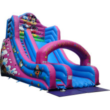 commercial outdoor big inflatable slide for kids