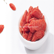 Alam Ningxia Goji Berries wolfberry