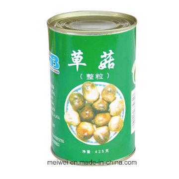 Mushroom Canned Straw Mushroom with 425g