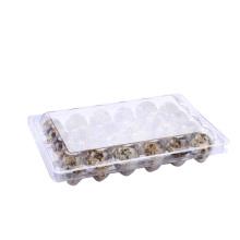 Bandeja plástica transparente para huevos de codorniz con blister
