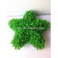 Haute émultion verte artificielle décorative en forme d'étoile en forme de bosai en pot