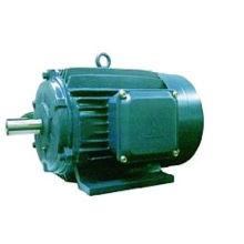 Motor elétrico trifásico da série Y