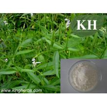 Andrographolide 5%, 30%, 50%, 95%, 98% Andrographis Paniculata Extract