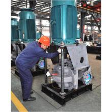 Hsv Serie Ce genehmigt vertikale Doppelsaugung Split Case Pumpe (HSV125-80-300A)