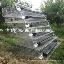 Cage de caille de couche de système d'eau automatique