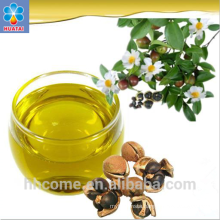 camellia oil press machine, tea oil processing machine