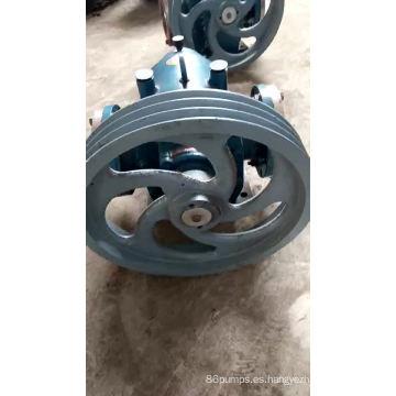 La bomba de rotor de triloz. Chaqueta con bomba de rotor aislada.