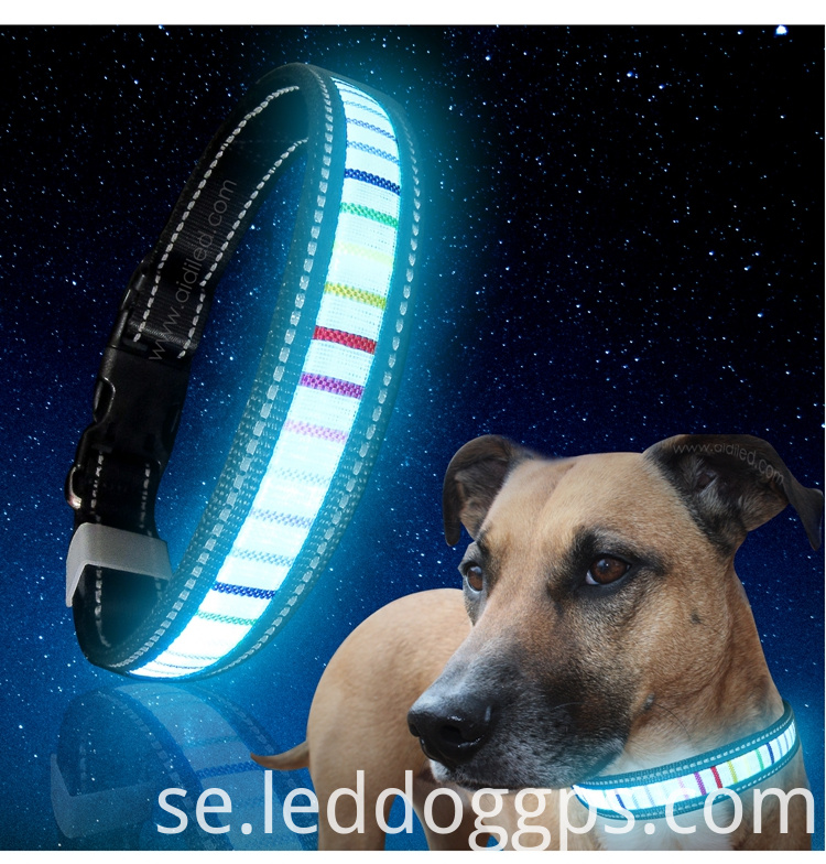 Glow In The Dark Led Dog Collar