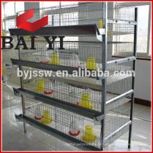 Nova gaiola de criação de frangos Pullet de design