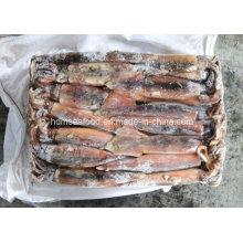 Calamars congelés d'Illex Argentinus