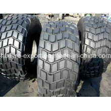 Tire for Desert Truck, 445/65r22.5 (18R22.5) Radial Tires with Best Quality and Prices, Aeolus Brand