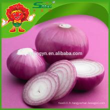 Vente en gros Oignon frais / Oignon jaune / onion rouge exportateurs en Chine