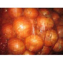 Cebolas amarelas frescas
