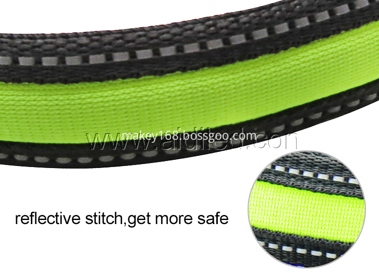 Safety Light Dog Collar