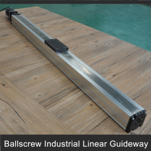 Cheaper ball screw linear actuator for linear axis