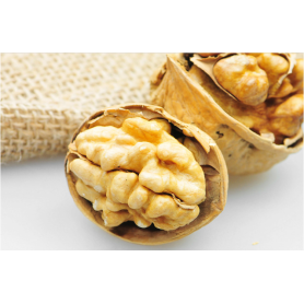 Pregnant snack shelled walnuts