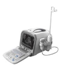 PT6601 Digitale Ultraschall-Diagnose-System