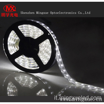 Striscia LED impermeabile SMD5050 LED Strip Light