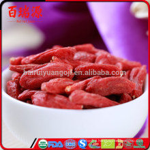 Goji berries health benefits medical research goji berries health benefits eyes goji berries health benefits youtube