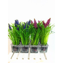 2015 lifelike mini platic grass artificial plant bonsai for home decor