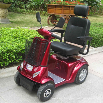 China OEM Single Seat Electric Car for Disabled (DL24800-3)