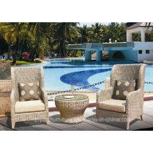 Fabrication de meubles d'hôtel pour fauteuils en rotin pour salon moderne (S287)