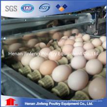 Material de alambre Pollo con huevo Equipo de granja
