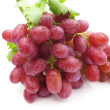 chinese grape red grape red grape supplier